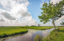 Picturesque polder landscape with ditches in the Netherlands. The photo was taken in summertime near the small village of Hoornaar, municipality of Molenlanden, provincie South Holland.