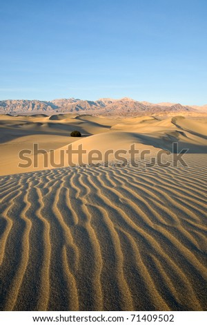 Picturesque ripples in the Mesquite Sand Dunes of Death Valley National Park, California.