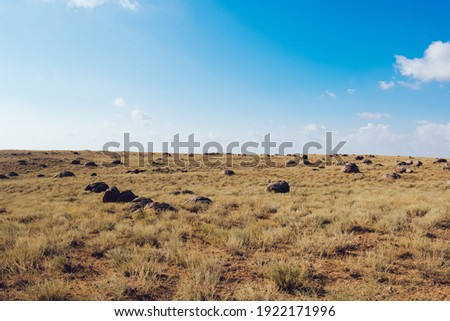 Picturesque scenery of stones placed on field with dry grass in savanna under cloudy blue sky in Torysh Valley of Balls Foto stock ©