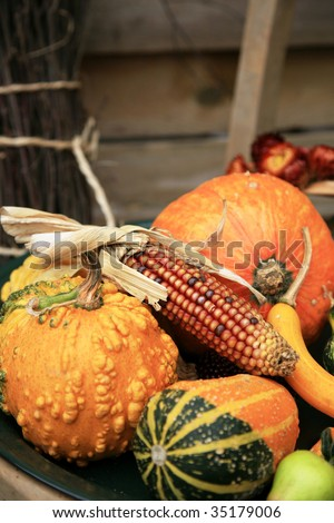 Picturesque small decoration in farm in Belgian with still life, holiday of the pumpkin Halloween Day.  Autumn crops.