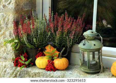 Picturesque small decoration in farm in Poland. Pumpkin, heathers and lantern on window. Autumn crops. #323295653