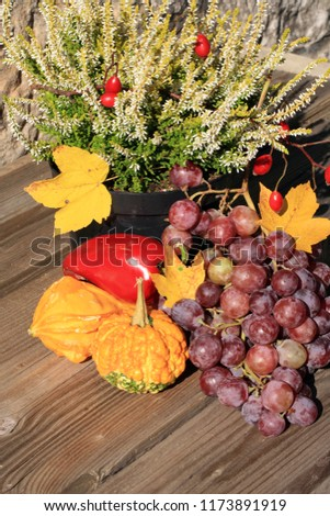 Picturesque small decoration in farm in Poland.  Vegetable with heathers composition. Autumn crops, harvest festival at the end of summer.  #1173891919