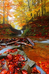 picturesque small waterfall in autumn forest, magnificent autumn view on autumn waterfall at evening sunlight