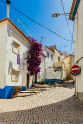 Picturesque streets in the tiny Portuguese ocean village Ericeira. Blue streets. Travel to the sea, Portugal.