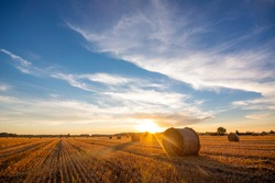 Picturesque sunset over harvested land in the country. Golden sun on tha horizon sends its last rays and makes long shadows of the haystacks.
