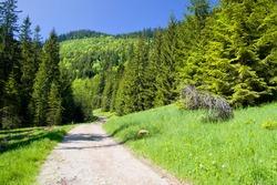 Picturesque Tatra Mountain scenery in the Tatrzanski National Park, Poland.
