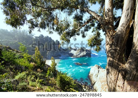 Picturesque view of the Northern California coastline.