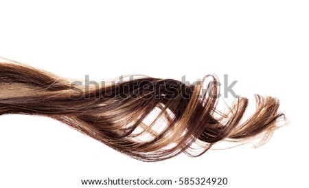 piece of brown hair on white isolated background