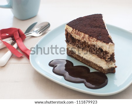 Piece of cake with chocolate fudge
