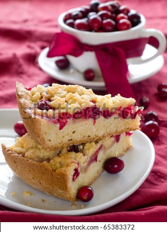Piece of cranberry cake with cup of cranberry on background
