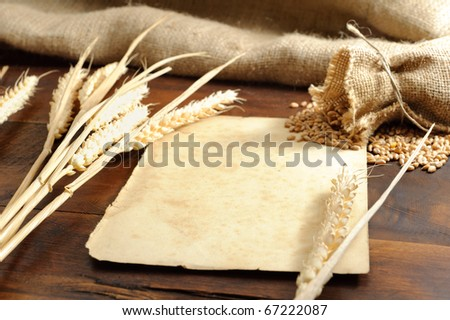 Piece of old paper with wheat ears background. Shallow DOF