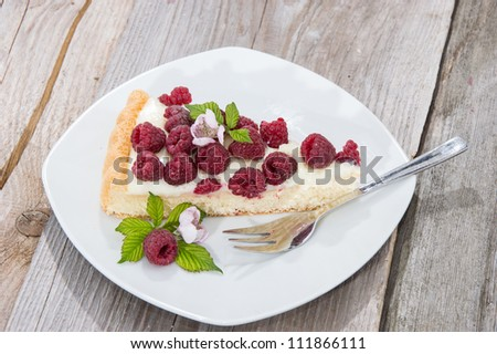 Piece of Raspberry Cake on a plate against wooden background