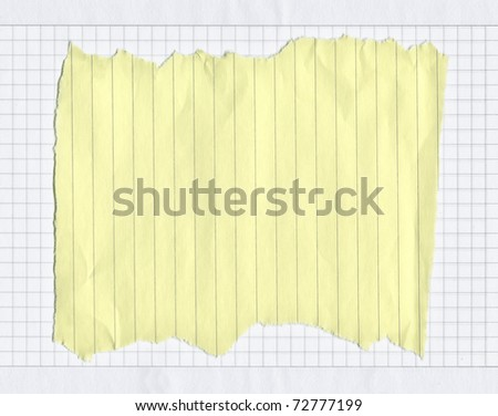 piece of torn lined paper on white squared paper, edges are frayed
