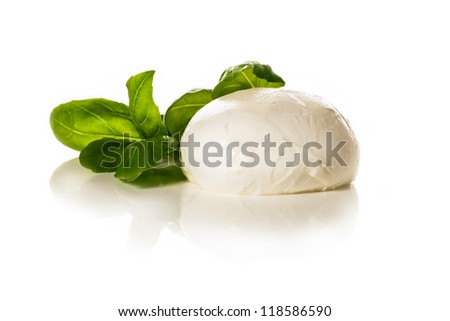 Piece of white mozzarella on white background. decorated with basil.