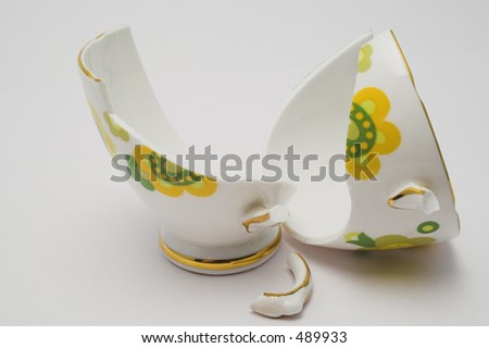 Pieces of a broken fine china cup