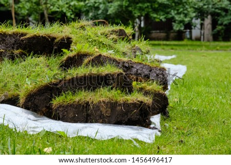 Pieces of lawn piled in a pile in summer