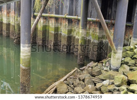 Pier Pilings Barnacles moss rust rocks in a row green brown grey low water ferry dock piling background industrial structural tide is out