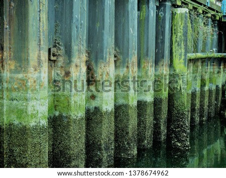 Pier Pilings Barnacles moss rust rocks in a row green brown grey low water ferry dock piling background industrial structural tide is out #1378674962