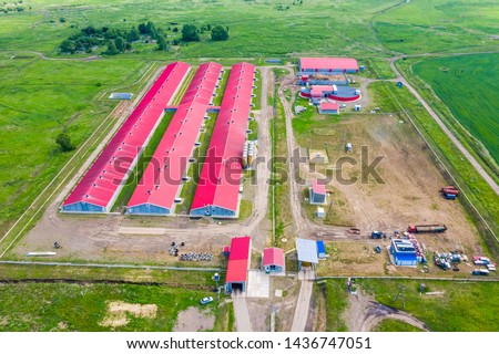 Pig farm in rural areas, productions of food, shooting from air