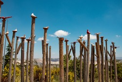 Pigeons on the pillars. Entrance to the Pigeon valley (Guvercinlik Valley). The city of Uchisar, Cappadocia, Turkey.