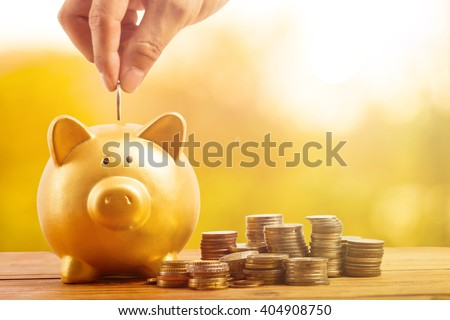 Piggy bank gold color and stack of money safe in the garden outside.
