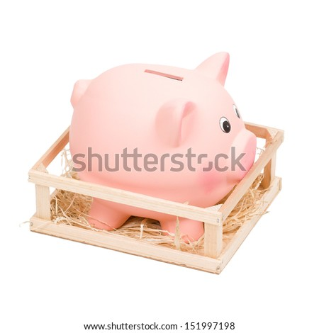 Piggy bank in small wooden corral