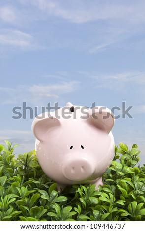 Piggy bank over blue sky