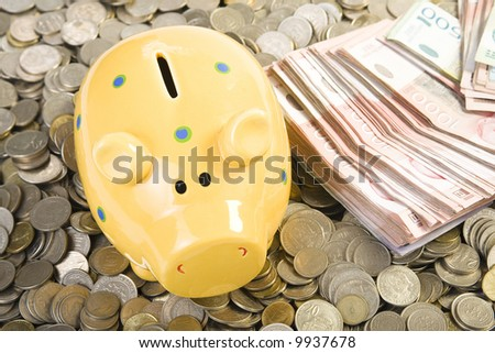 Piggy bank standing on coins. Business concept