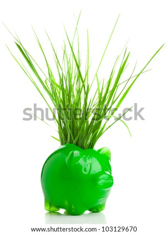 Piggy bank with grass blades - environment saving or protection concept - stock photo