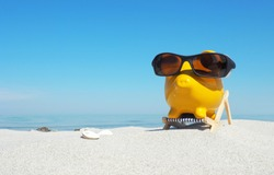 Piggy Bank with Sunglasses  in Vacation - Panorama