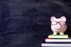 Piggybank college student wearing glasses, blackboard background
