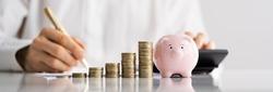 Piggybank Money And Calculator. Accountant Insurance Collection