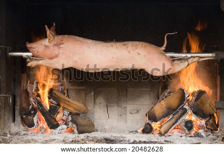 Piglet roasted on a spit