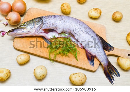 Pike during the preparation to baking