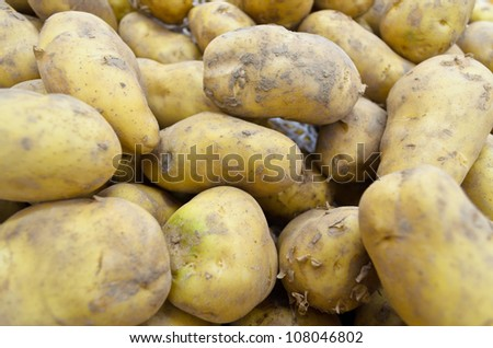 pile fresh potatoes waiting sold