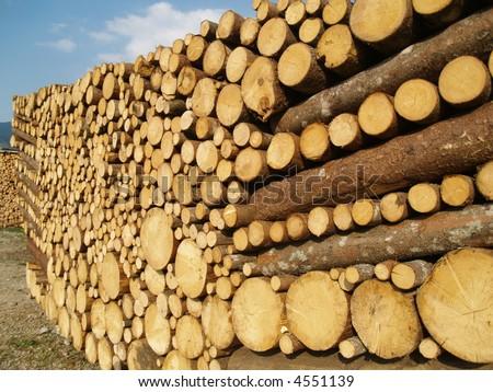 pile of a nice lumber