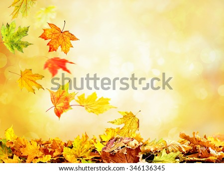 Pile of autumn leaves on nature background #346136345