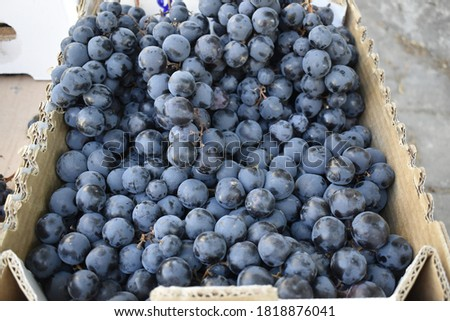 Pile of black grapes (Siyah Üzüm) are in the market box. Stok fotoğraf ©
