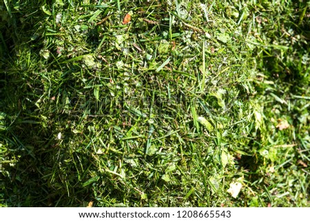 Pile of cut grass from above #1208665543