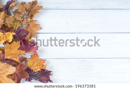 Pile of Fall Leaves on side of Rustic White Painted Board background with room or space for copy, text.    Horizontal vintage cross process