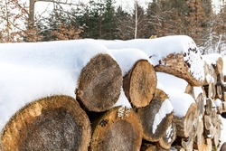 Pile of firewood in winter. Many chopped logs. Pile of Firewood Covered in Snow. Firewood under the snow.Wood fuel.