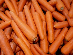 pile of fresh carrots for sale on the supermarket.