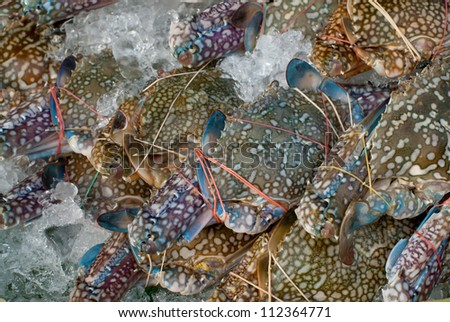 pile of fresh crabs in the market