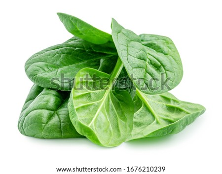 Pile of fresh green baby spinach leaves isolated  on white background. Close up Сток-фото ©