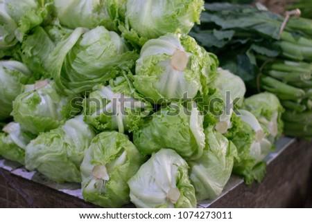pile of lettuce