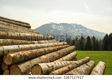 Pile of logs near hiking trail in Entlebuch biosphere reserve, Switzerland