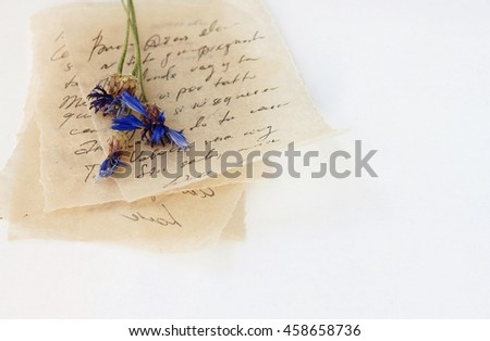 Pile of Love letters handwritten (unrecognizable) text, on beige vintage thin paper, dried blue flowers.