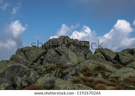 pile of mossy rocks on a mountain
