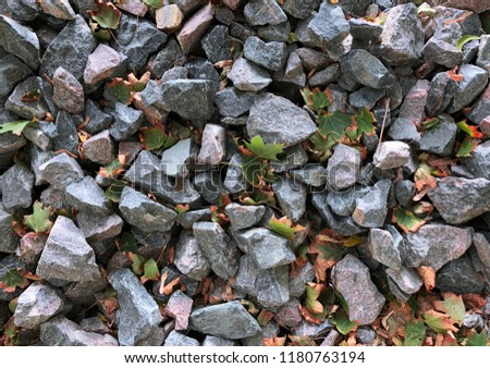 Pile of natural gray granite stones with autumn leaves close-up. Various shapes gravel background. Rough stones with uneven surfaces and colorful laminated structures #1180763194
