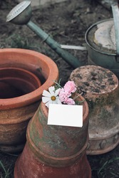 Pile of old empty clay flower pots. Blank business card mockup. Rosemary herb, cosmos and pink rose flowers. Moody gardening lifestyle scene. Shabby ceramics composition with watreing can. Vertical.